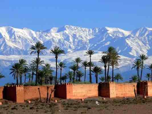 اضغط على الصورة لعرض أكبر  الاســـم:ImageUploadedByمزاعيط المغرب1498855831.235913.jpg المشاهدات:339 الحجـــم:15.7 كيلوبايت الرقم:954
