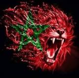 الصورة الرمزية أسد الاطلس