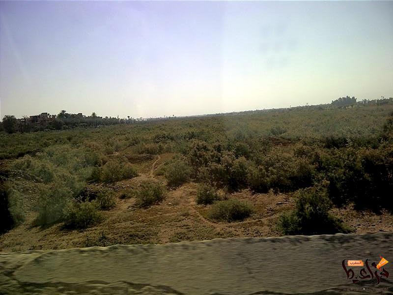 صور بسيطة من مراكش